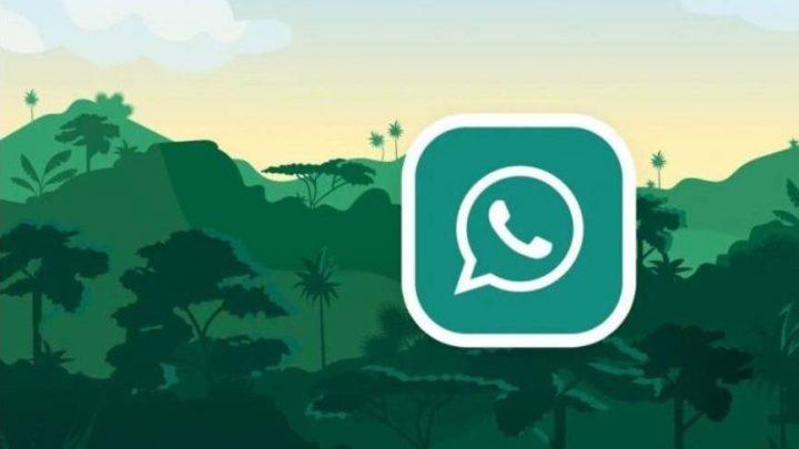 WhatsApp mesaj gönderilemedi hatası